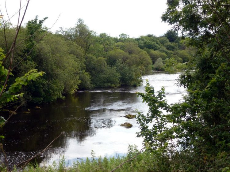 Old River Shannon, Doonass, with base compensation flow
