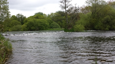 Castleconnell fishery, beat 3 (1)