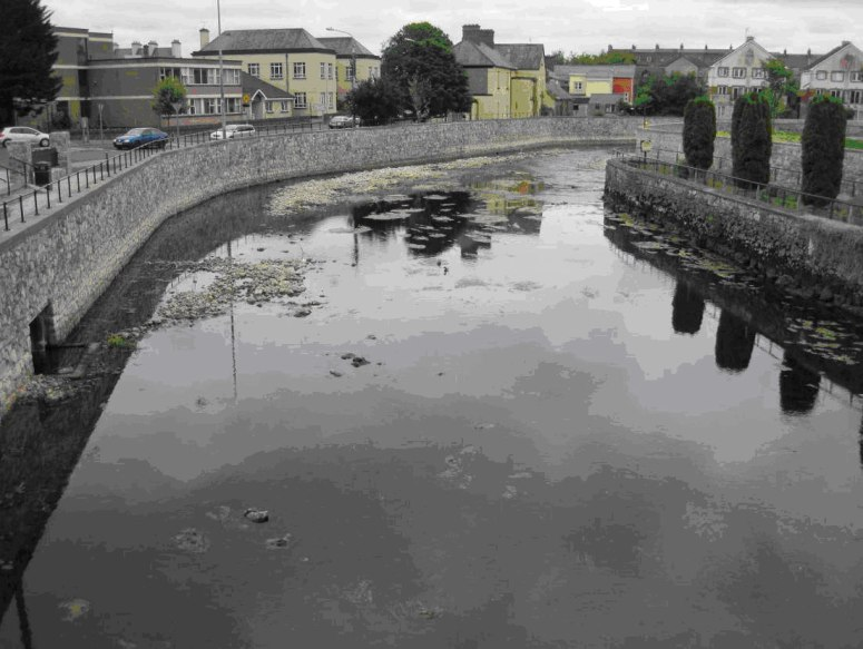 After the Ennis flood scheme - lamprey spawning habitats were also severely affected.