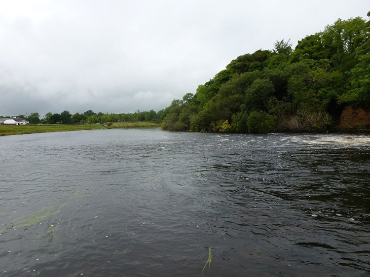 Jamestown Weir - a fly-fishing beat of the future?