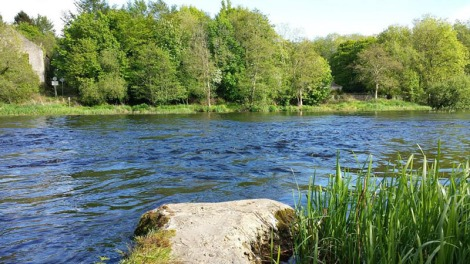 Castleconnell fishery, beat 5