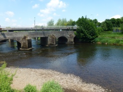 Low water levels made sea lamprey ova very vulnerable to suspended solids pollution