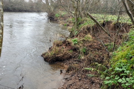Bank slippage upstream of Ballyclough weir