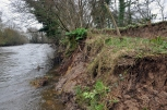 9 of 30: Bank slippage upstream of Ballyclough weir