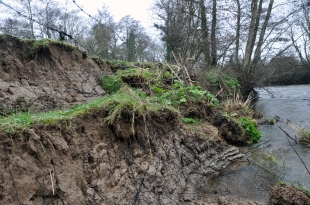 18 of 30: Bank slippage upstream of Ballyclough weir