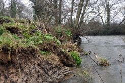 2 of 30: Bank slippage upstream of Ballyclough weir