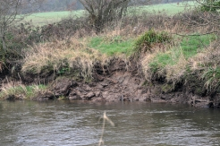 5 of 30: Destabalised banks upstream of Ballyclough weir