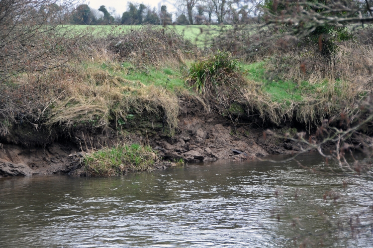 Destabilised river banks upstream of Ballyclough weir
