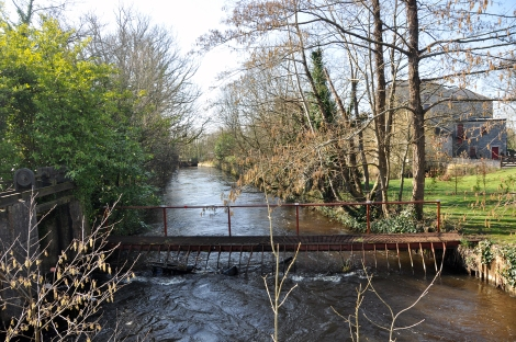 River Brosna, Belmont Weir, Entrance to headrace. No smolt or eel screens being operated.
