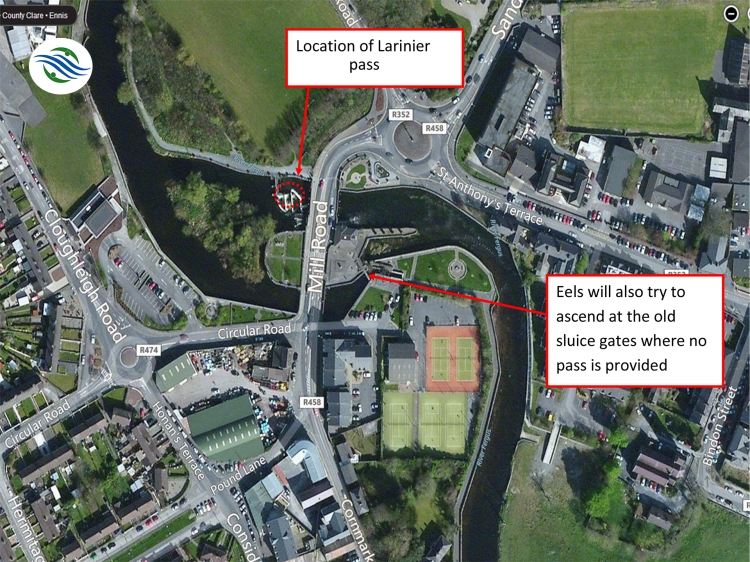 Location of the new fish pass at the Mill Road Bridge, Ennis, Co Clare