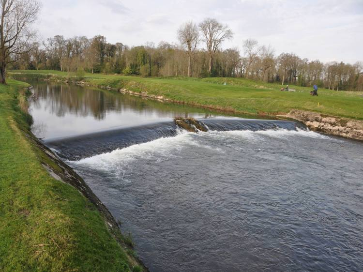 No sign of any elver traps at the IFI elver monitoring site on the River Maigue, May 2014