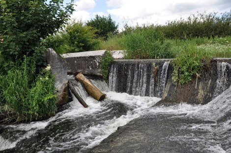 Blocked fish pass, Clara, June 2014 (alternative view)