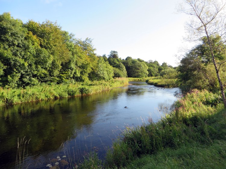 The River Boyle, Co Roscommon, downstream of Lough Gara
