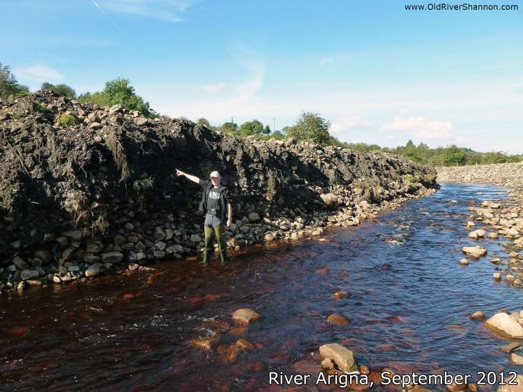 Devastating instream works like this example on the Arigna River in Shannon catchment are legal in Ireland if undertaken during the summer months, according to Inland Fisheries Ireland. But are we getting the full story here? According to an answer given in the Houses of the Oireachtas in 2012 these works were completed by Inland Fisheries Ireland.