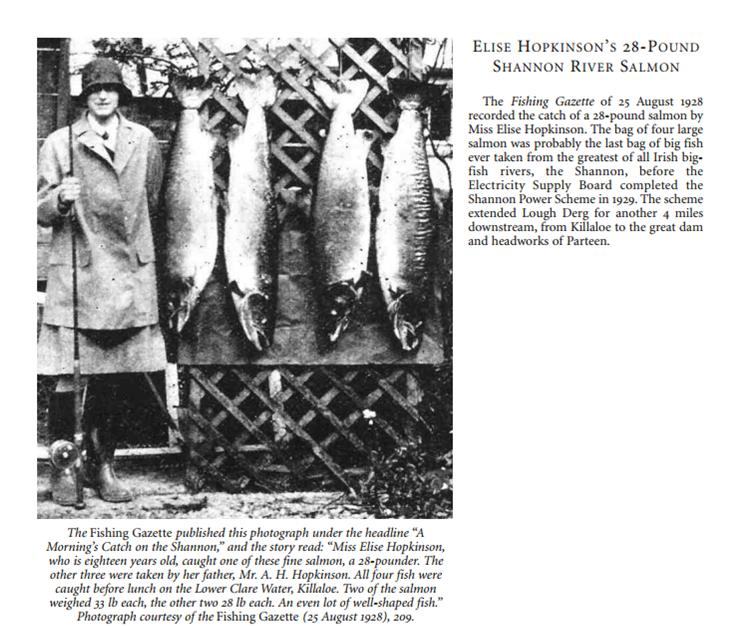 This picture was published by Fred Buller in the Journal of The American Flyfisher, Fall 2013, and shows a salmon catch on the Lower Clare Water, Killaloe, on the 25th August 1928, just before the completion of the Shannon hydroelectric scheme in 1929.