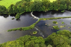 Lower River Shannon (11)