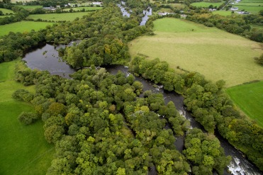 Lower River Shannon (16)