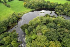 Lower River Shannon (17)