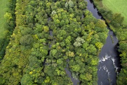 Lower River Shannon (21)