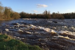 lower-river-shannon-16