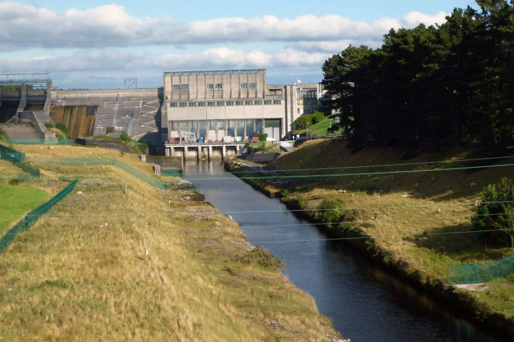 At least 336,000 juvenile eels died at Cathaleen's Fall dam on the River Erne in Ballyshannon during April 2014.